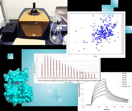 創薬をささえる分析化学イメージ画像